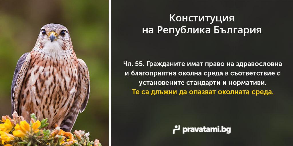 konstitucia-na-balgaria-chlen-55