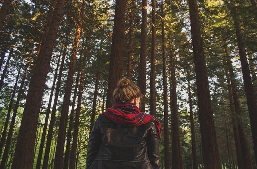 Правата ми в гората