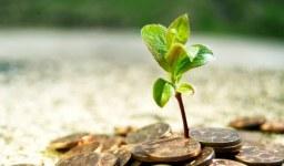 Какви са изискванията за капитал на фирма?