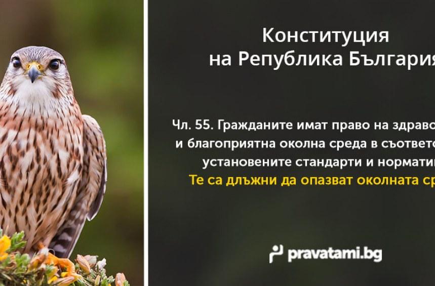 Конституцията – Опазване на околната среда