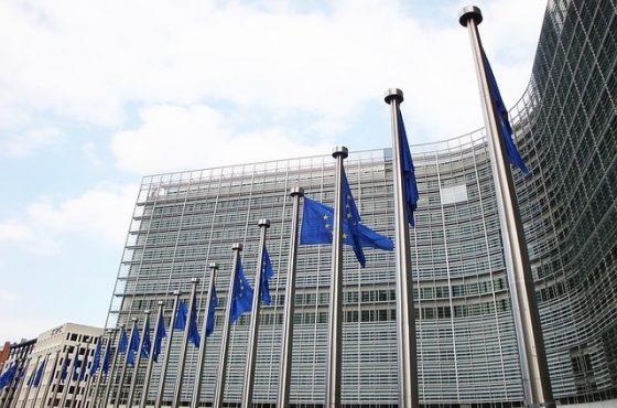 кой друг иска да узнае функциите на един еврокомисар в европейската комисия