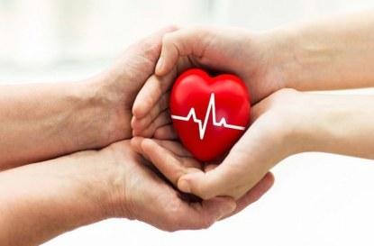 Обмен на органи за трансплантация в ЕС – правната страна