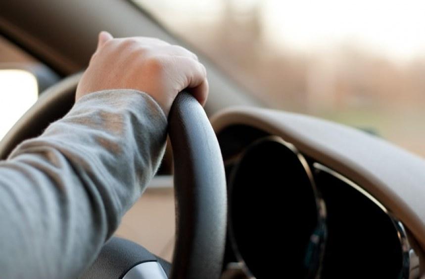 Листовки, кормуване… или как да взема шофьорска книжка?