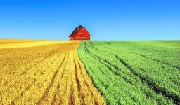 Как да възстановя собствеността си върху земеделска земя? (Реституция)
