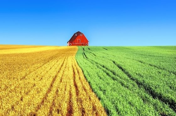 как да възстановя собствеността си върху земеделска земя - реституция
